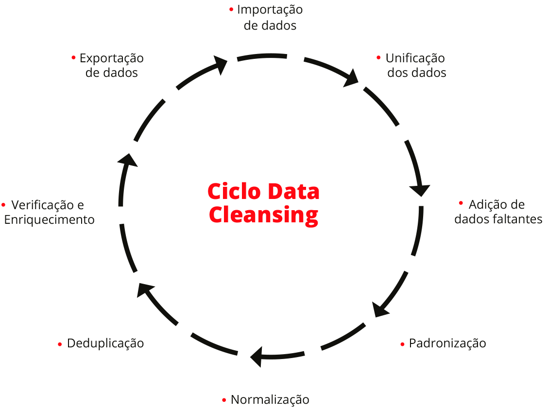 Ciclo Data Cleasing